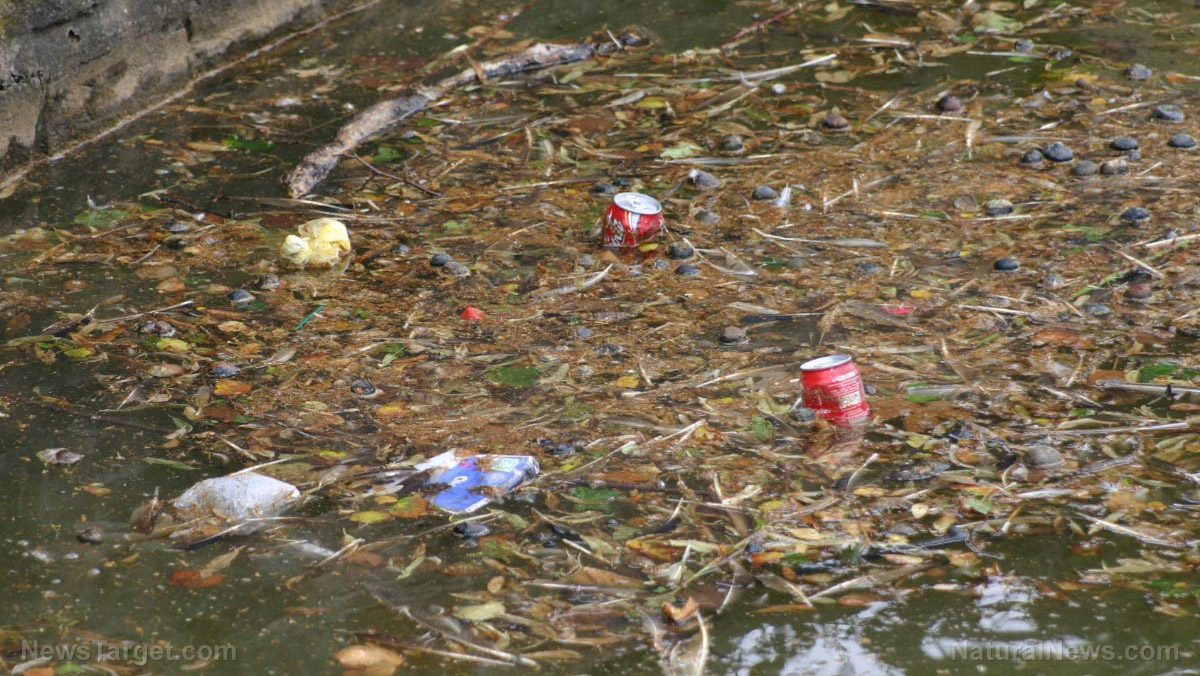 The New Garbage Patch Uncovered By A Team Of Researchers And Volunteers On Six
